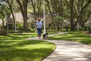 A senior woman walking her dog